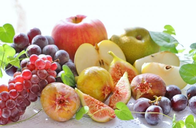 ふるさと納税 おすすめ 果物